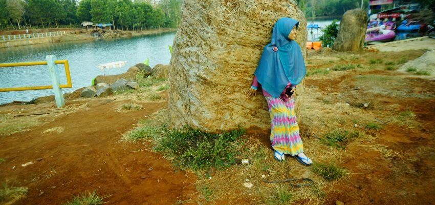 Gajah di Balik Batu